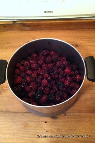 bowl-of-berries