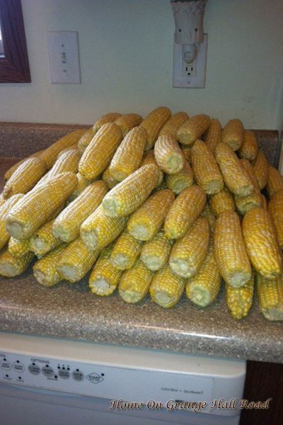 lots-of-corn